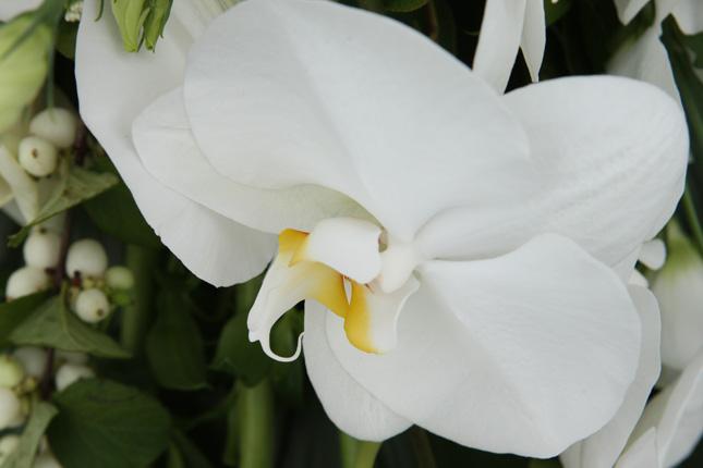 8-boeket-el-florido-c