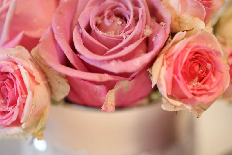 evenement-el-florido-09-b
